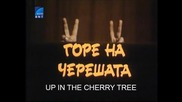 Горе На Черешата С Веселин Прахов (1984) Бг Аудио Част 1 Tv Rip Бнт Свят