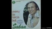 Saban Saulic - Zbog nje sam ostavio majku - (Audio 1976)