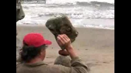 Изумително - Камъни