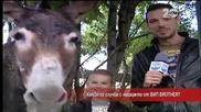 Лудия репортер в откровен разговор с магарето от VIP Brother
