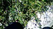 Dunyanin En Guclu Adami Agici Bile Kokunden Cikardi Gibi Yikti Beyaz Perdede 2018 Hd