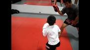 Изумително 5 Годишен Боксьор