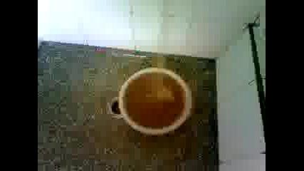 Това е питейната вода на кв.късовци на цена 1.70лв