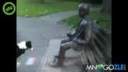 Куче се заиграва със статуя