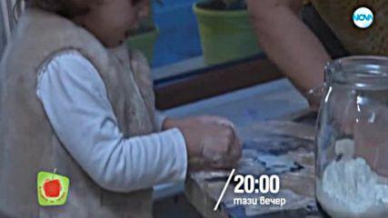 Черешката на тортата - тази вечер по NOVA (21.12.2018)