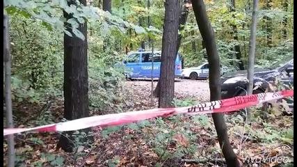Паднало дърво в Борисовата градина