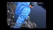 Оцеляване на предела - Исландия (цял епизод) - Бг субтитри