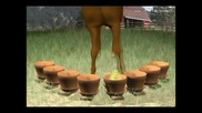 Пеещото Пиленце - Анимация