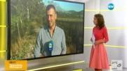 Пожар изпепели къщи във вилна зона в Бургаско