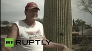 "USA: ""NSA big time?"" Arizona town hides cameras in fake cacti"
