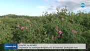 Протест на розопроизводители от Казанлъшко