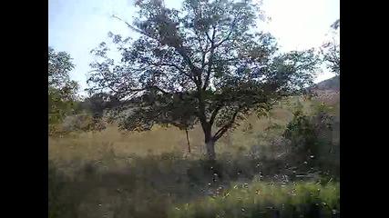 По Пътя Кърджали - Хасково