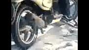 tonkata varti s motora