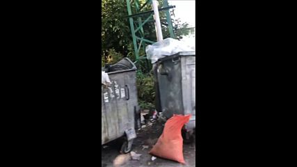 Сметопочистването в София