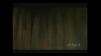 Клипове на avigea