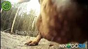 Луда разходка на куче с байк