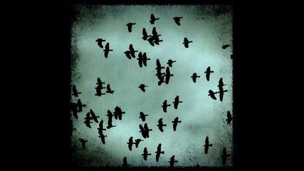 Наутилус Помпилиус - Чёрные птицы