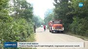 """Голям пожар се разгоря в парк """"Бакаджика"""" в Ямбол"""