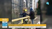 Маймуна от столичния зоопарк пострада след храна от посетители