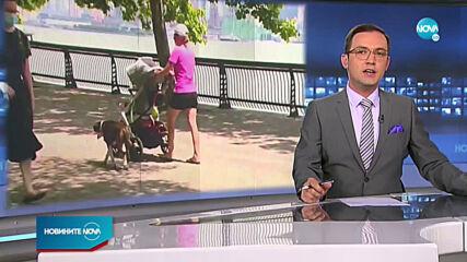 Новините на NOVA (11.08.2020 - 7.00)