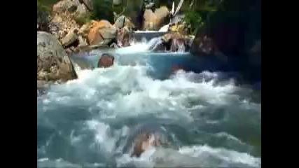 Водата на Живота H Q