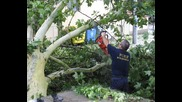Хроника на произшествията през 2010 г. възникнали на територията на Рупбс гр.свиленград