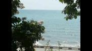 Тоника-Без Море Живял Ли Си?