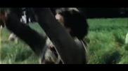 Высоцкий - Баллада о борьбе - Стрелы Робин Гуда
