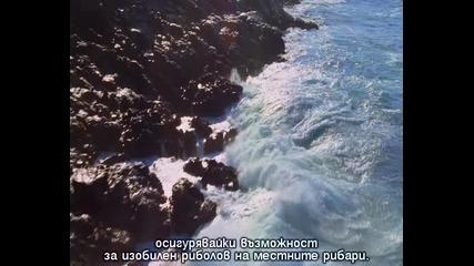 Дивият океан! ( Част 1/2 )