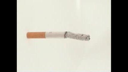 Кампания срещу тютюнопушенето