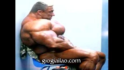 Big Muscles !!!