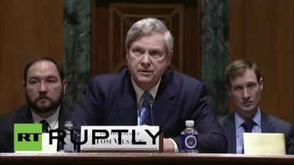USA: 'Just let it go' - 'Frozen' ringtone interrupts Senate hearing