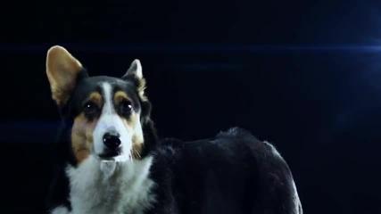 Swedish House Mafia - Save The World (официално видео) *
