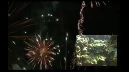 Берковска Духова Музика - Веселие