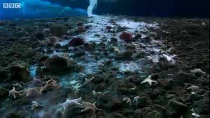 Леденият пръст на Смъртта - Антарктика