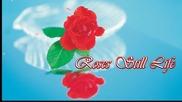 ✿ Натюрморти с рози! ... ... (музыка Сергей Чекалин) ... ...✿