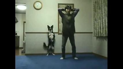 Упражнение на куче
