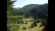 Местност - Арийца1 - село Забърдо