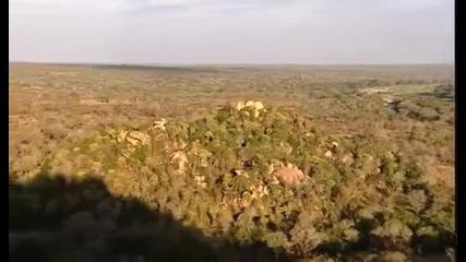 Африканските Животни - Discovery Channel !