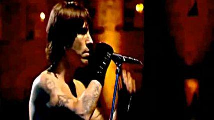 Red Hot Chili Peppers - Under the bridge - концерт в Ирландия 2003г.