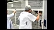 Кучешки приют в Мексико търси осиновител на рядък вид бенгалски тигър