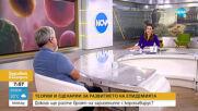 Проф. Николай Витанов: Заболелите в края на септември ще са най-малко 25 хиляди (ВИДЕО)