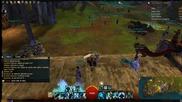 Най-бързия начин за вдигане на левел в Guild Wars 2