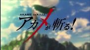 Akame Ga Kill! episode 14 (бг събс)