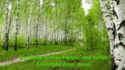 Хармония в брезовата гора! ... ( Gheorghe Iovu music) ...