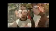 Bloodhoung Gang - The Bad Touch