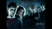 Harry Poter - btr93