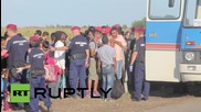 Hungary: More refugees transferred to detention centre after tear gas used
