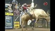 Sean Willingham Vs. Mule Train