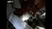 Кристална Пещера В Мексико